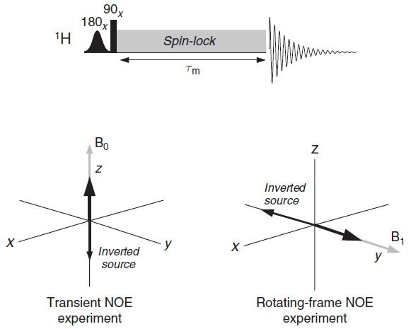 Rotating Frame Nmr Frame Design Amp Reviews